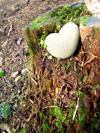 Nothing like finding a heart-shaped rock on your honeymoon!