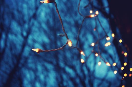 stringlights.martinak15