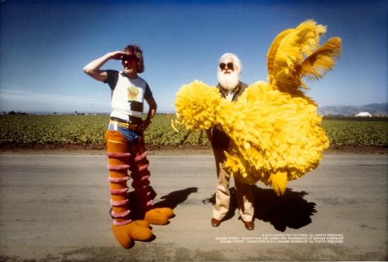 Iam BigBird
