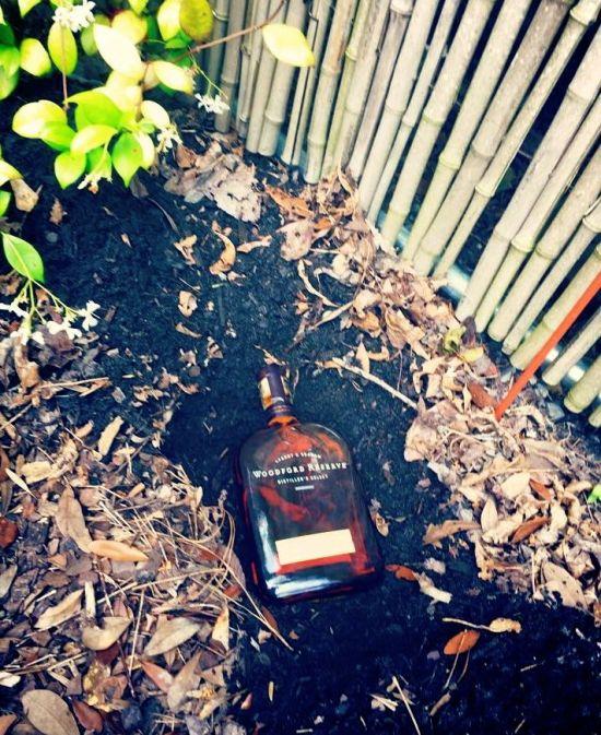 bourbon.Kendalpic